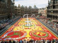 BRUSSELS, the flower carpet, Grand Place